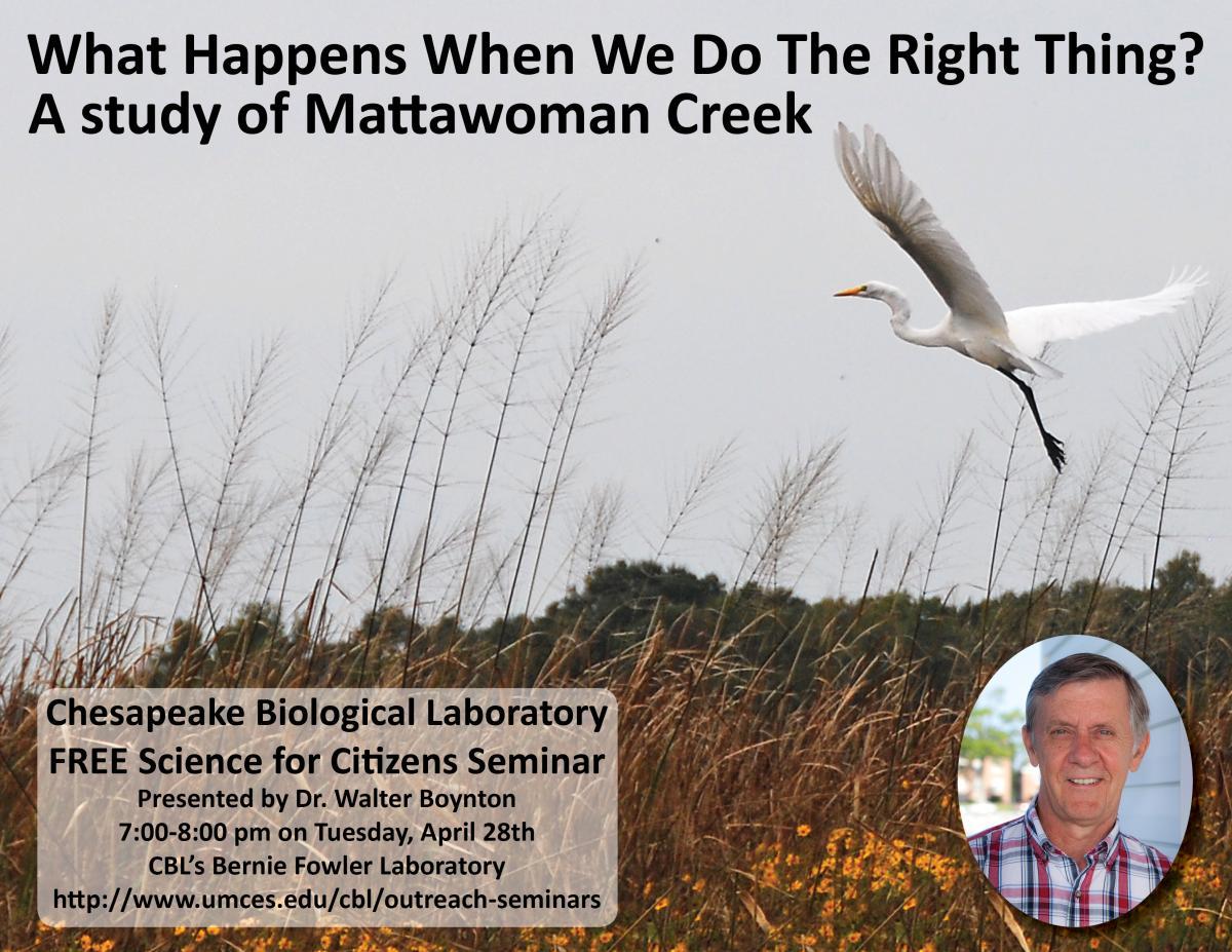 Poster promoting Mattawoman Creek seminar