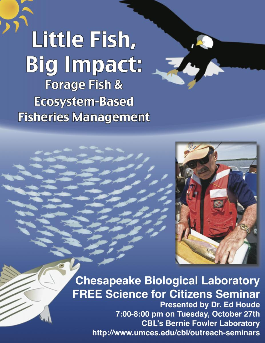 Poster promoting Little Fish: Big Impacts seminar