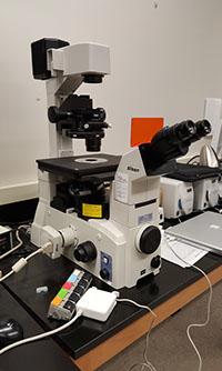 Nikon Eclipse TE2000-U Fluorescent Microscope