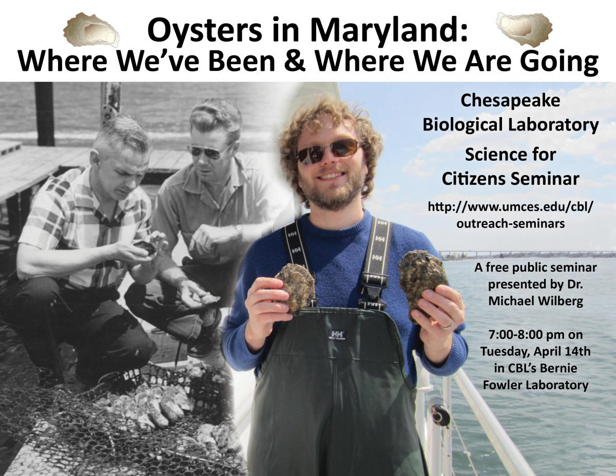 Poster promoting Oyster Past and Future seminar