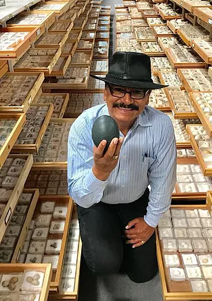 Rene Corado shows a bird egg among a huge collection of eggs