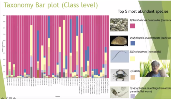 slide that says Taxonomy Bar Plot (Class Level)