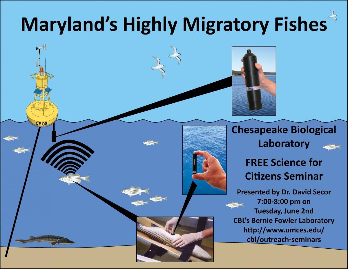 Poster promoting Maryland's Migratory Fish seminar