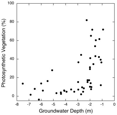 Vegetation-groundwater relationship for 47 sites measured in 1992.