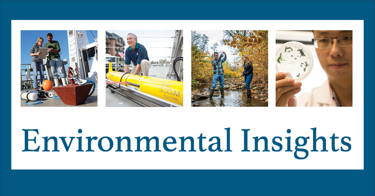 This is the banner for the Environmental Insights newsletter.