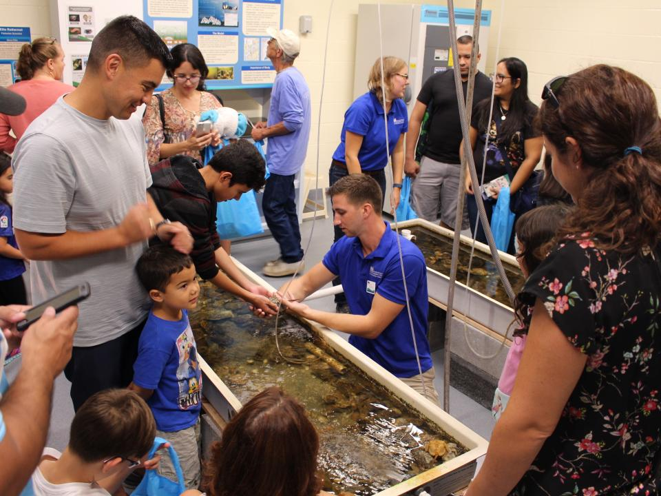 Touch tank behind the scenes at Chesapeake Biological Laboratory Open House