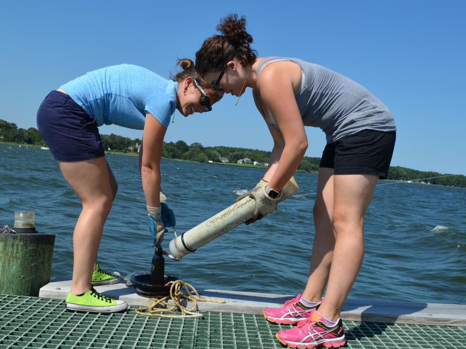 dolphinwatch team retrieves cpod