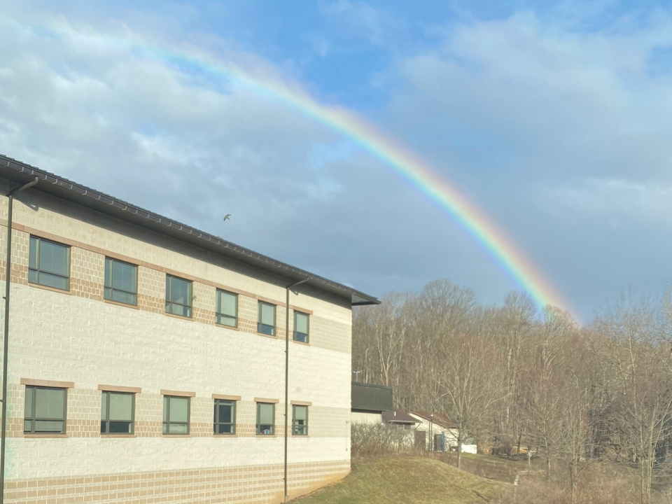 Rainbow and bird flying over AL