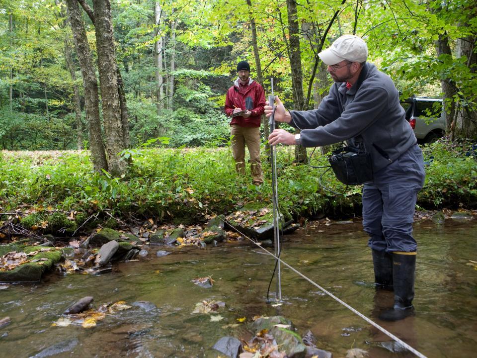 researcher studies streams