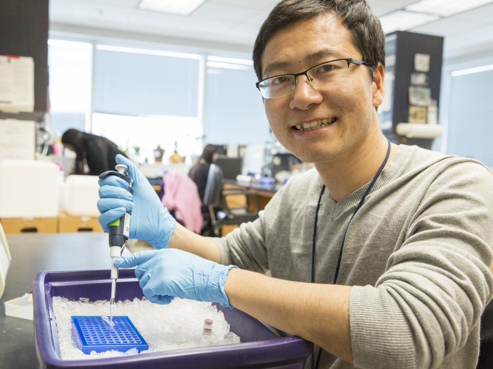 Student prepares genetic samples for study