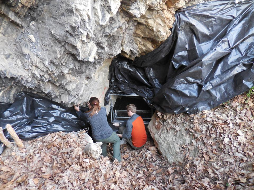 Researchers setting up trapping at cave.
