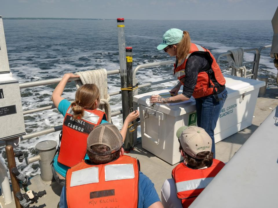 Students look at a sediment core from the Chesapeake Bay aboard the Rachel Carson research vessel