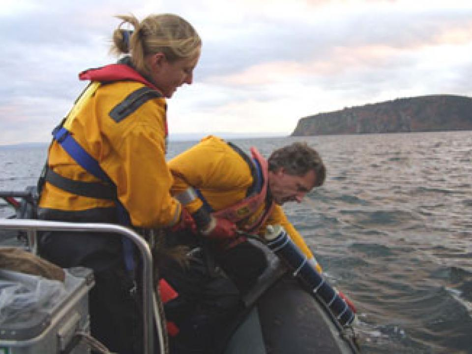 Retrieving a hydrophone that can detect dolphin and porpoise echolocation clicks. Courtesy of University of Aberdeen.