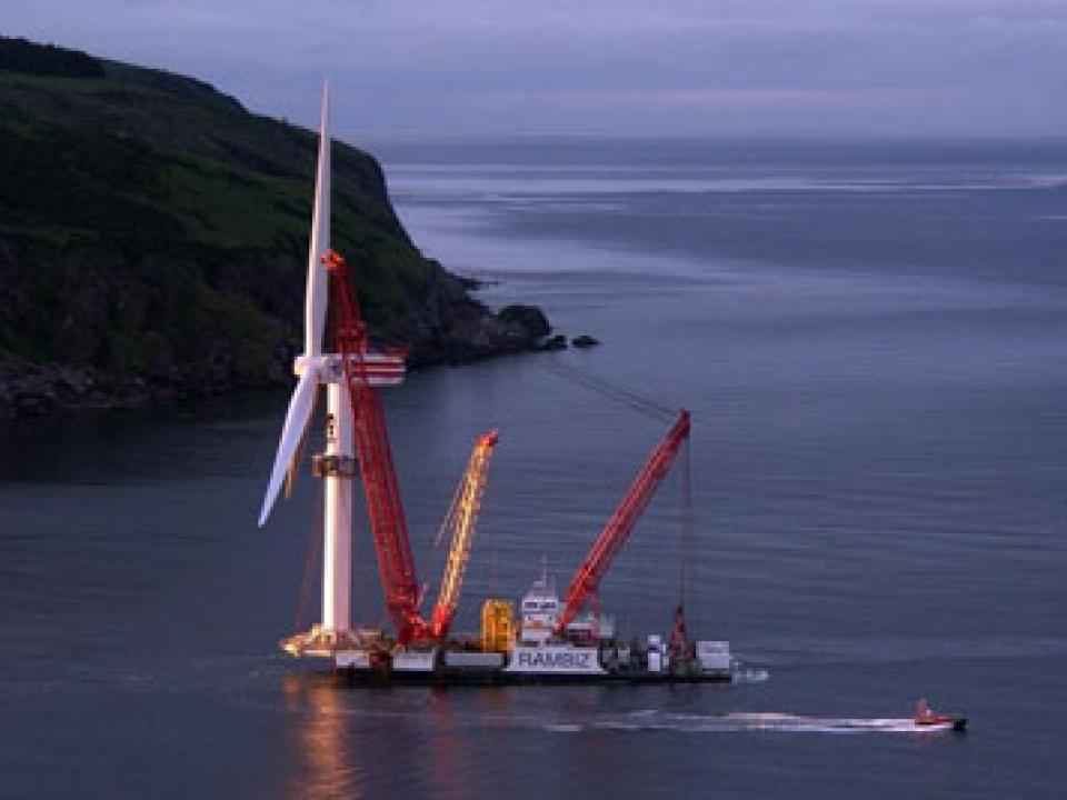 Construction noise from offshore windfarms can travel large distances. Courtesy of Colin Dunn.