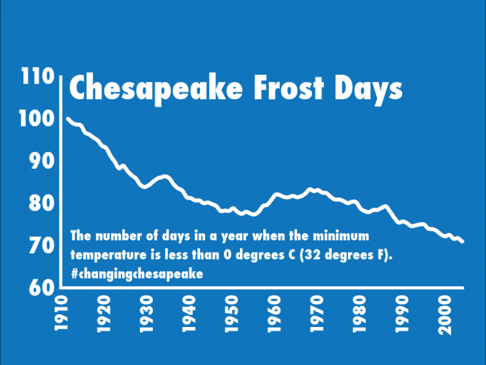 graph showing the drop in numbers of days with frost
