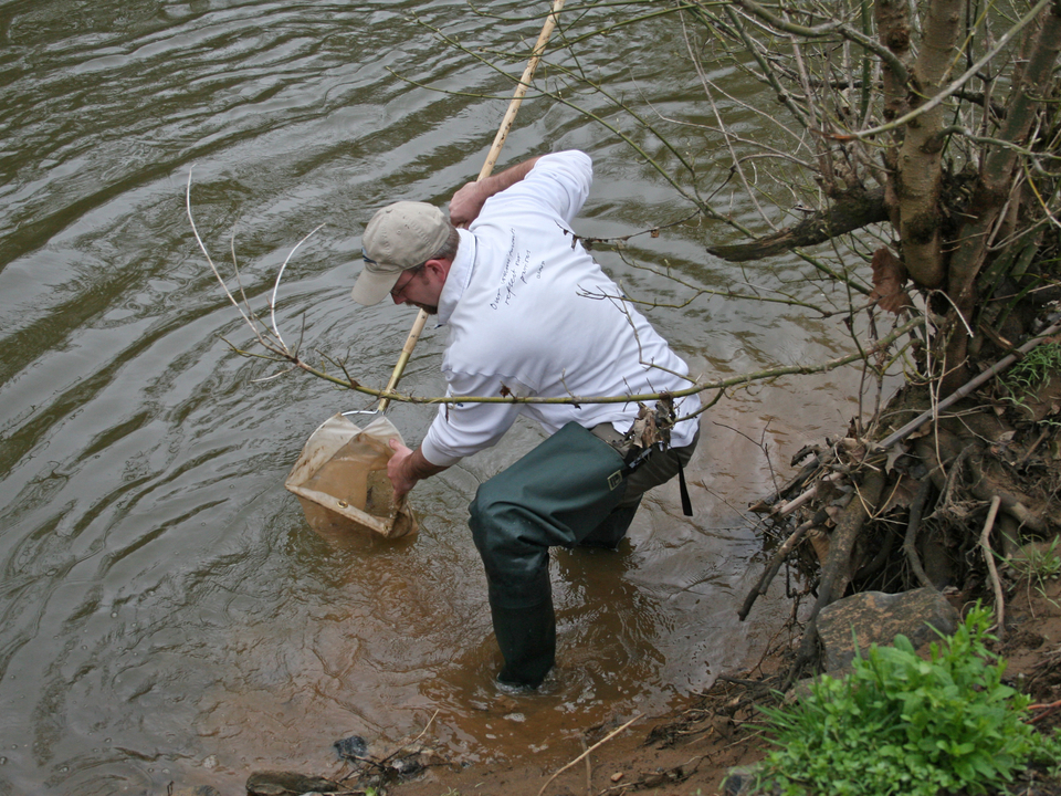 A person standing and hunched over a shallow part of a river holding a water quality sampling tool into the river.