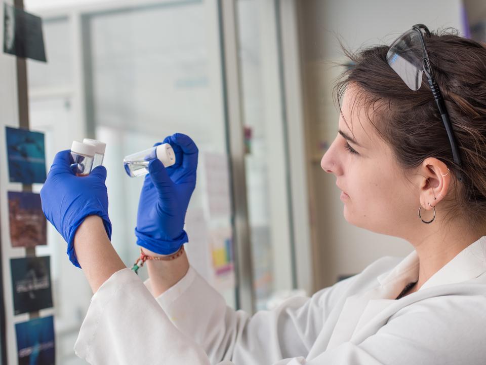 Lauren Jonas examining a petri dish in her lab