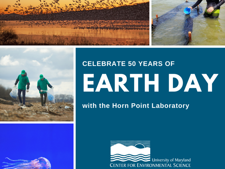 HPL Earth Day 2020