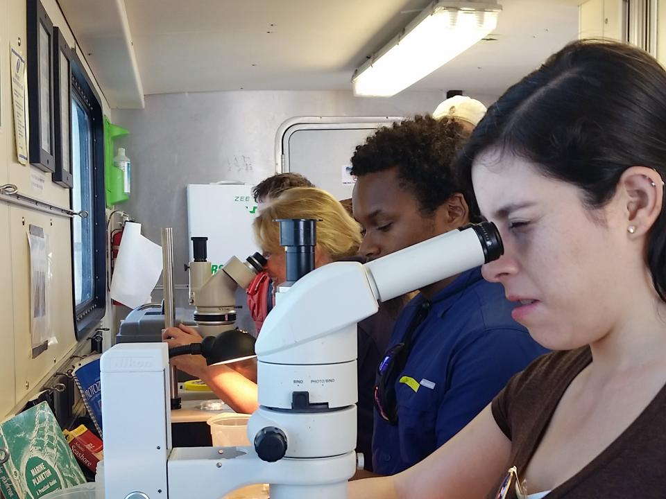 Ana Sosa, a graduate student at IMET, peers into a microscope to identify plankton pulled from the water.