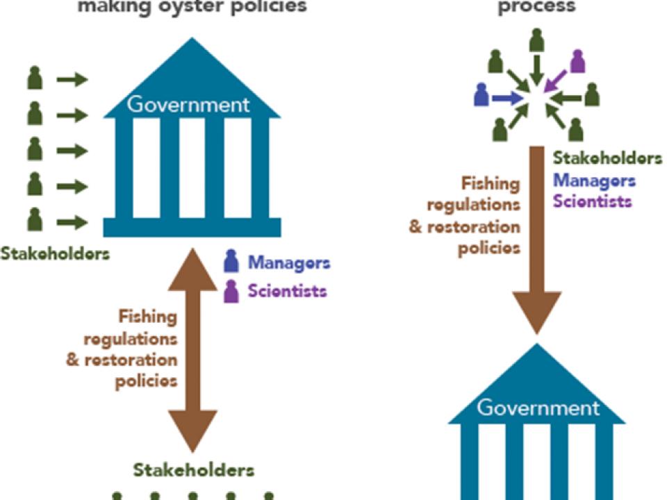 Infographic - Consensus Process