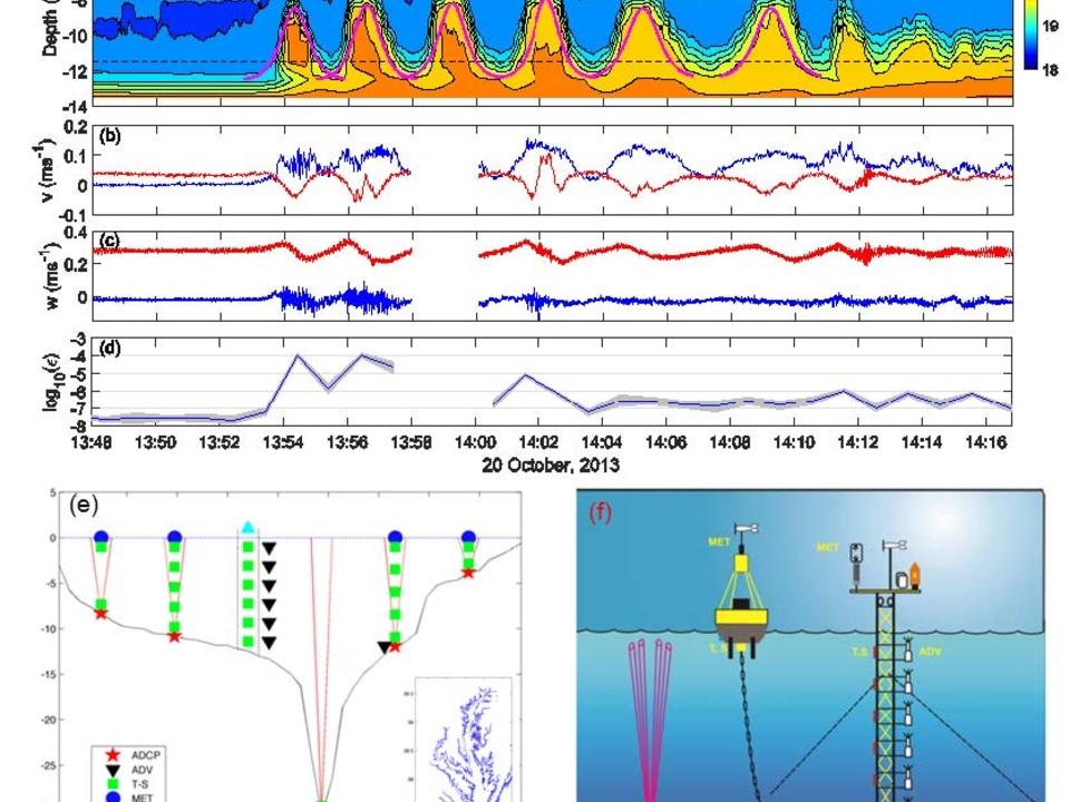 Nonlinear internal waves