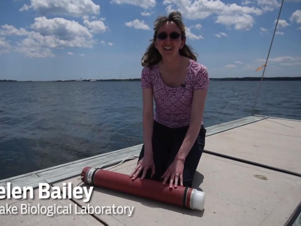 helen bailey talks dolphinwatch to the baltimore sun