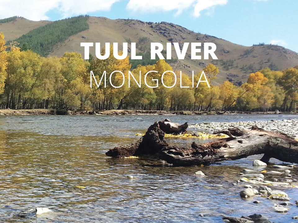 Cover image of Tuul River report card