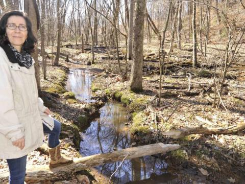 Watershed scientist Solange Filoso is studying how stream restoration projects in Anne Arundel County affect water quality. Photo by Jeffrey Brainard