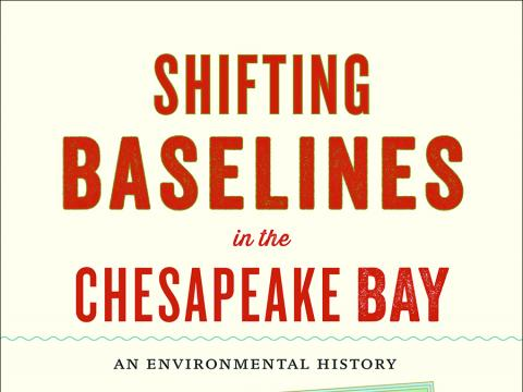 cover of the book Shifting Baselines by Vic Kennedy
