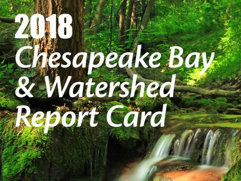 cover of the 2018 Chesapeake Bay report card