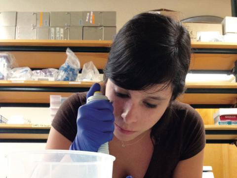Graduate student Ana Sosa analyzing microorganisms on plastics in the lab.