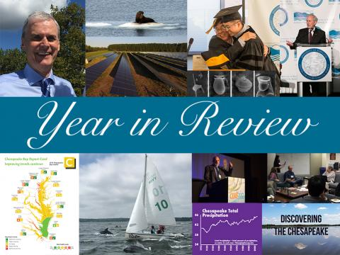 2017 year in review images