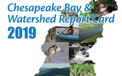 2019 Chesapeake Bay Report Card