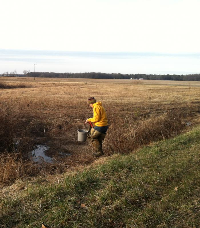 person gathering samples with a bucket