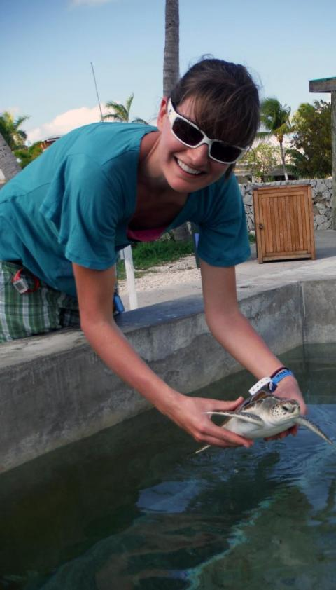 Aimee Hoover holds up a turtle during a research trip to the Cayman Islands.
