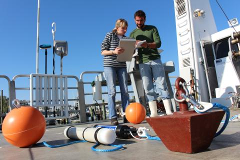 Researchers take notes during an infield study on the research vessel.