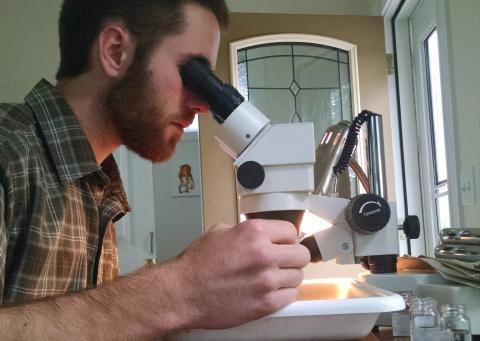 Graduate student Jacob Oster peers through a microscope