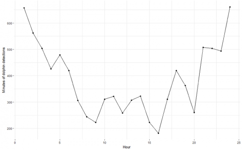 This graph shows how many dolphins were detected at different times of the day.