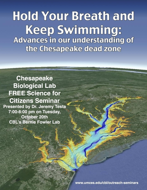 Poster promoting Hold Your Breath & Keep Swimming seminar