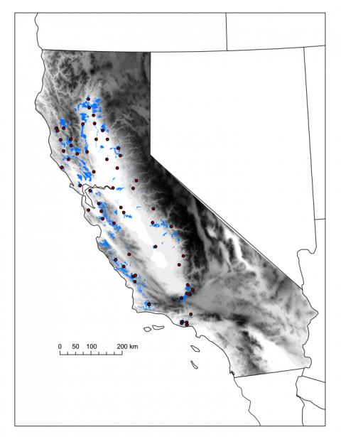 Map showing sample sites in relation to the distribution of valley oak and topography.