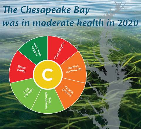Bay Health Graphic. Ches Bay Health was given a moderate C grade