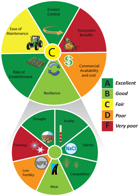 Diagram of a grading wheel for Ecosystem Services and Resiliency for Bermudagrass, which earned an overall rating of C, or Fair.