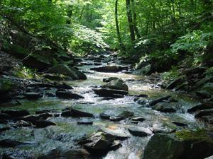 Photo of an Appalachian Mountain stream