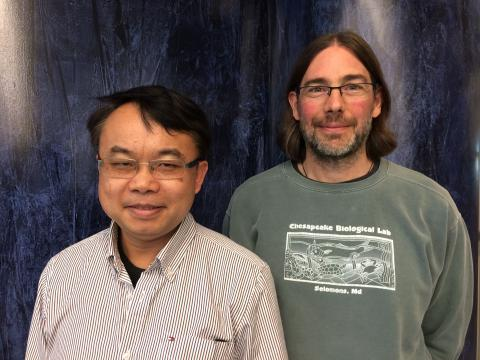 Professors Feng Chen and Michael Gonsior