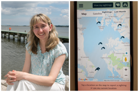 Dr. Helen Bailey on the left and DolphinWatch app screen shot on the right.