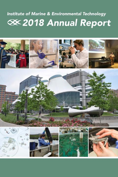 Cover of IMET 2018 annual report