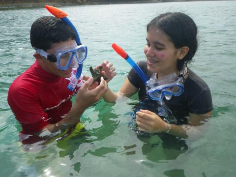 Students studying bioluminescence in Puerto Rican lagoons.