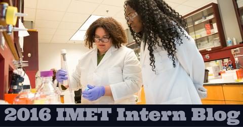 Link to the 2016 IMET Intern Blog