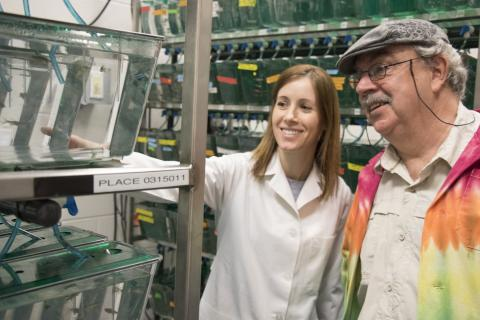 Mary Larkin looks at zebrafish with her adviser, Allen Place