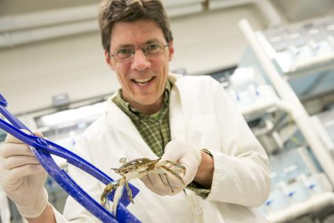 Eric Schott with crab in lab